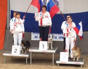 All-Around World Agility Champions-Mini