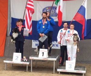 Biathlon World Agility Champions-Mini