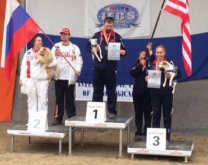 Biathlon World Agility Champions-toy